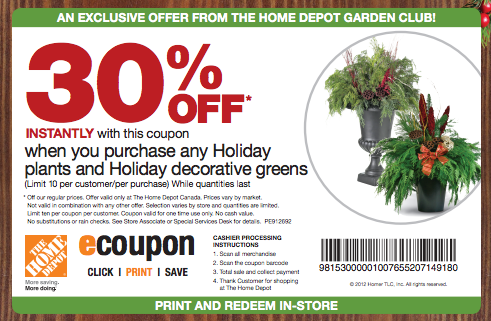 Printable-The Home Depot retail coupon